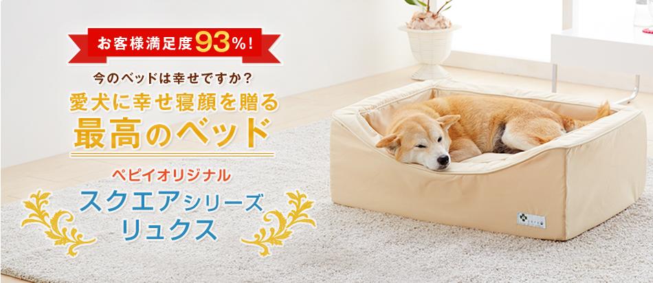 愛犬に幸せ寝顔を贈る最高の犬用ベッド