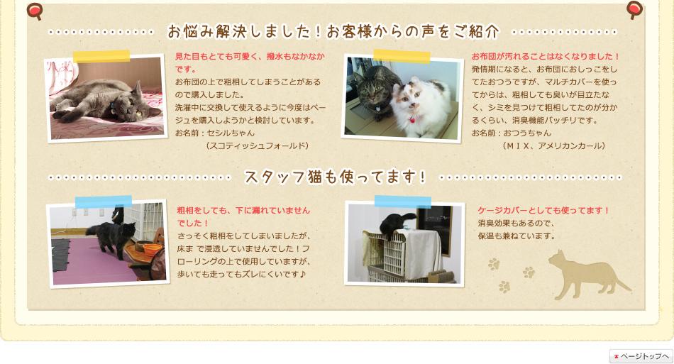 お悩み解決しました!お客様からの声をご紹介 スタッフ猫も使ってます!