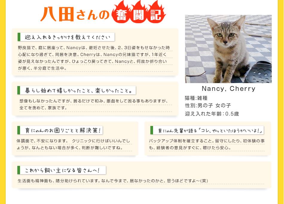 八田さんの奮闘記