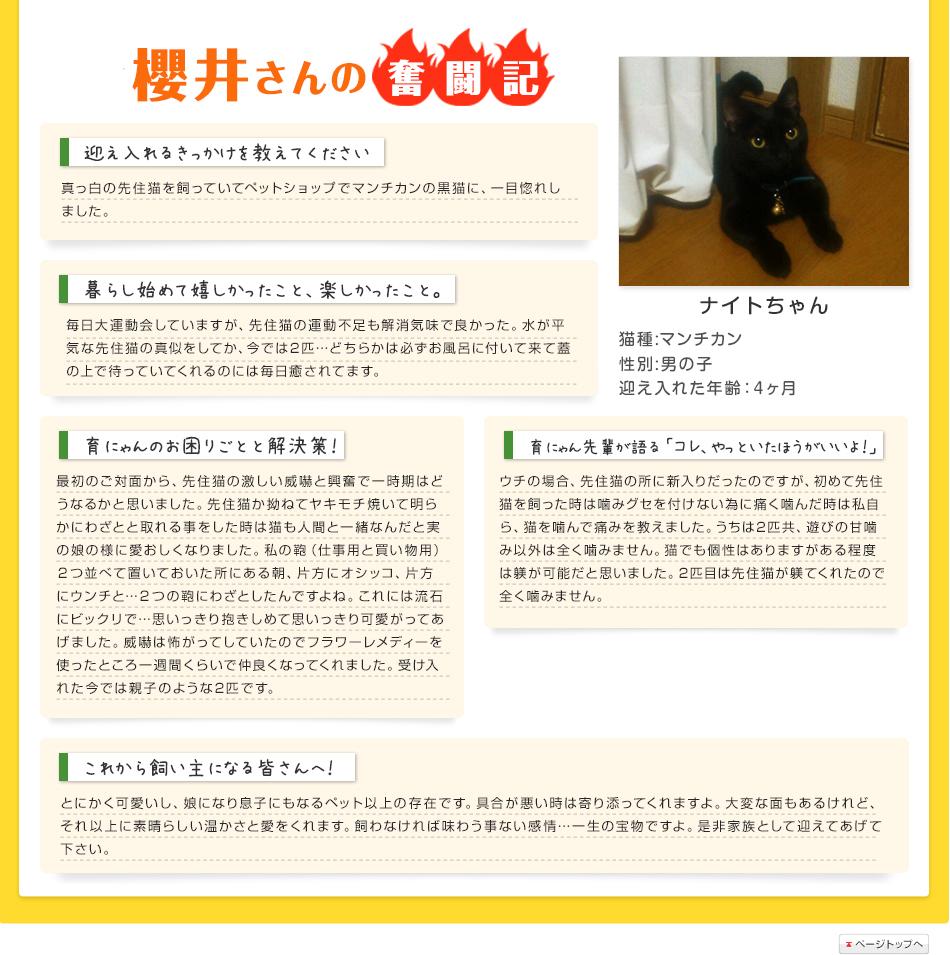櫻井さんの奮闘記
