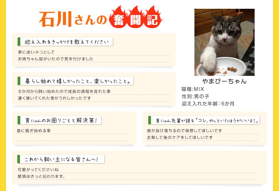 石川さんの奮闘記