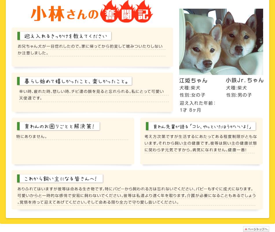小林さんの奮闘記
