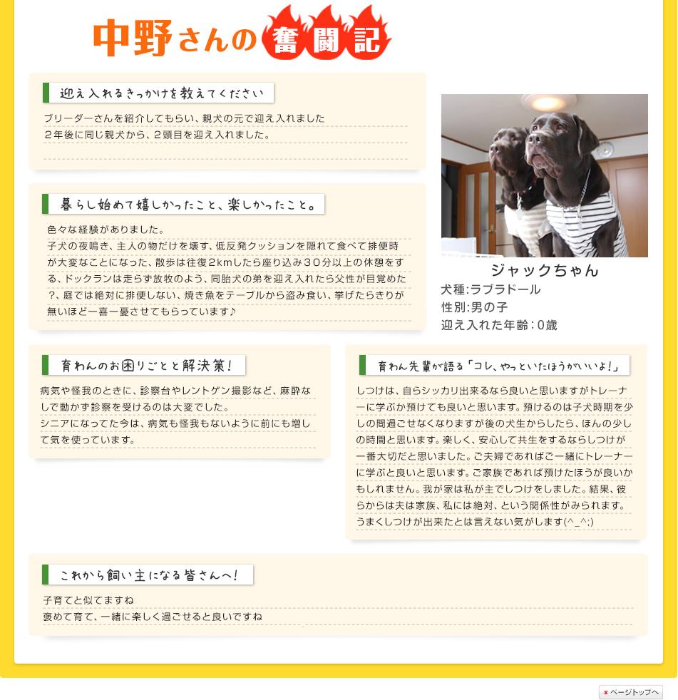 中野さんの奮闘記