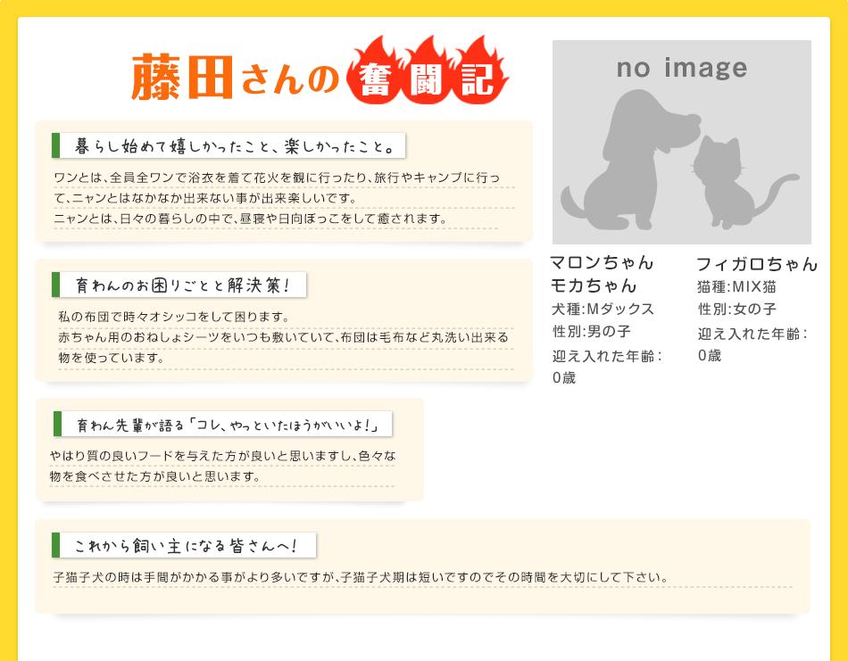 藤田さんの奮闘記