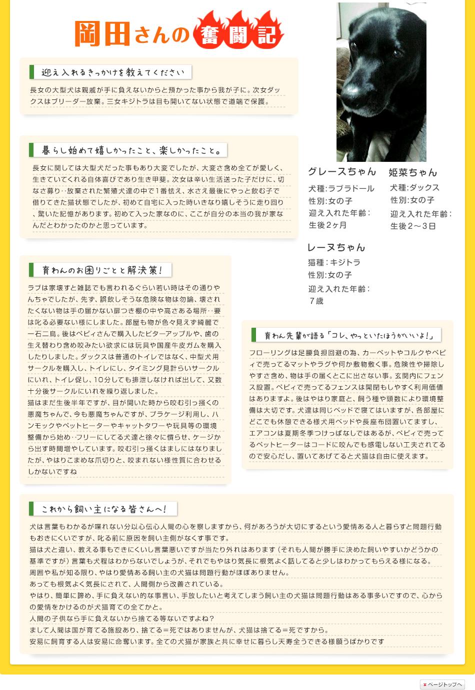岡田さんの奮闘記