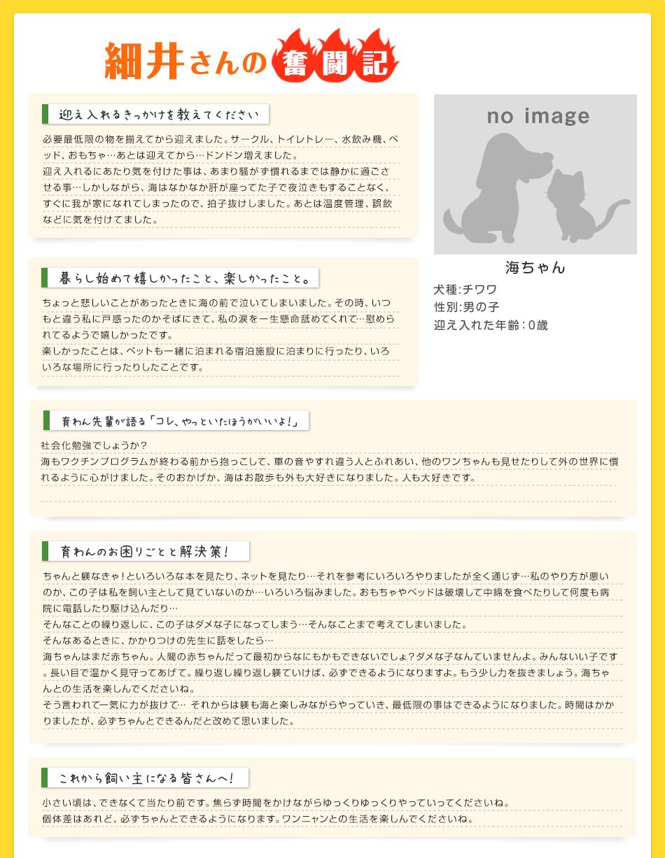 細井さんの奮闘記