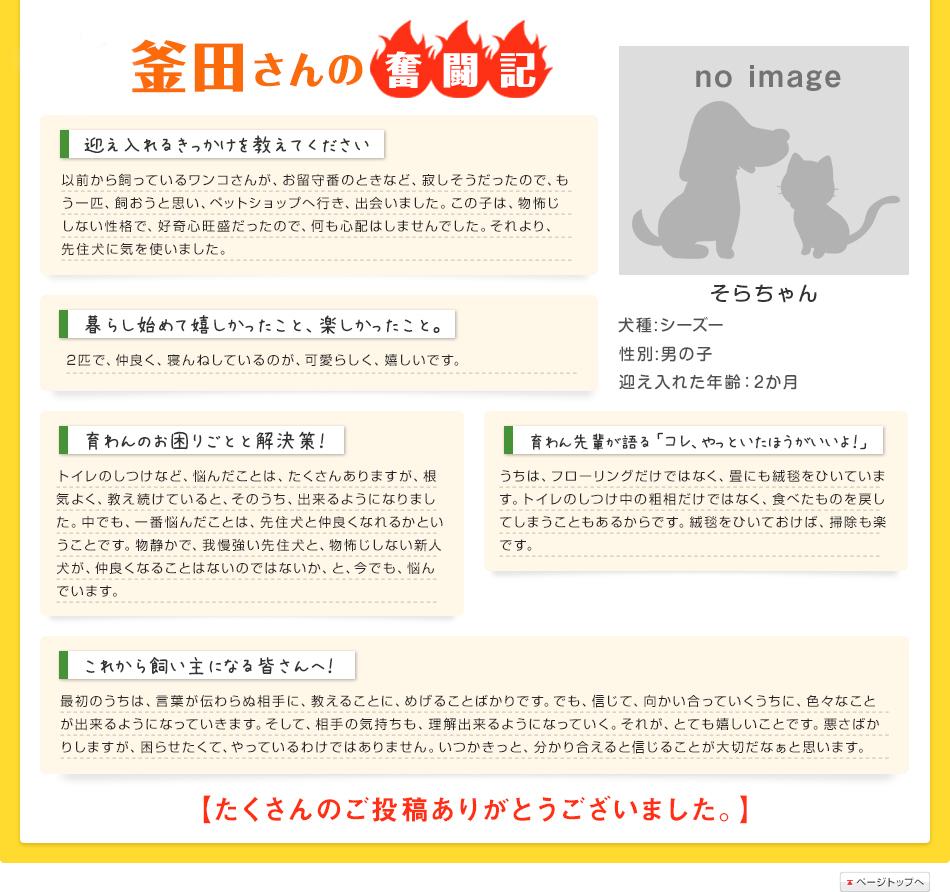 釜田さんの奮闘記