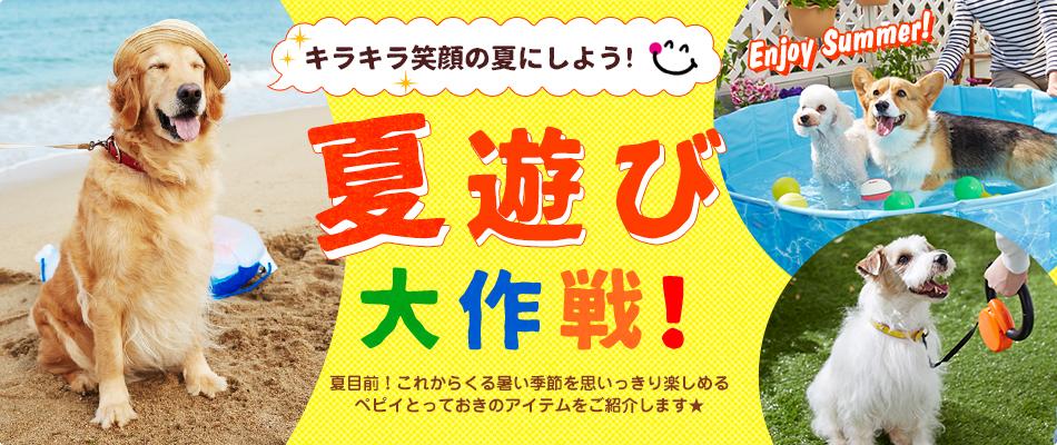 ペット用品通販ペピイの夏遊び大作戦