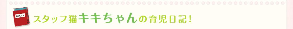スタッフ猫キキちゃんの育児日記!