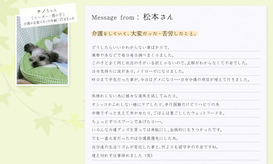 松本さん/チノちゃん
