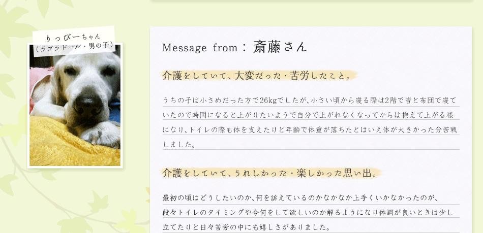 斎藤さん/りっぴーちゃん