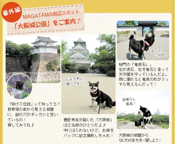 番外編 MAGATAMA周辺スポット「大阪城公園」をご案内♪