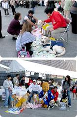 補助犬イベント参加画像
