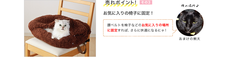 お気に入りの椅子に固定!