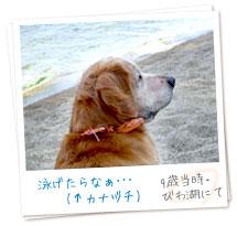 泳げたらなぁ・・・(↑カナヅチ)(9歳当時・びわ湖にて)