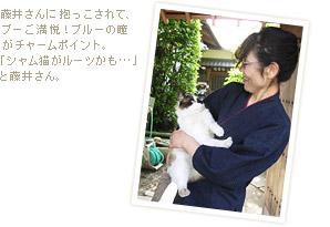 藤井さんに抱っこされて、ブーご満悦!ブルーの瞳がチャームポイント。「シャム猫がルーツかも・・・」と藤井さん。