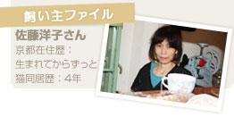 【飼い主ファイル】佐藤洋子さん/京都在住歴:生まれてからずっと/猫同居歴:4年