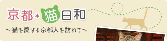 京都*猫日和 ~猫を愛する京都人を訪ねて~
