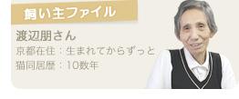 【飼い主ファイル】渡辺朋さん/京都在住:生まれてからずっと/猫同居歴:10数年