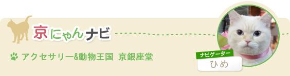 「アクセサリー&動物王国 京銀座堂」(ナビゲーター:ひめ)