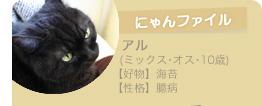 【にゃんファイル】アル(ミックス・オス・10歳) ○好物:海苔 ○性格:臆病