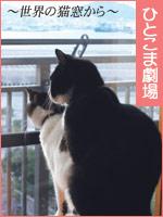 ひとこま劇場 ~世界の猫窓から~