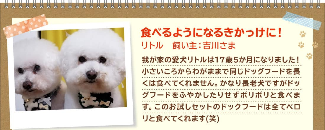 食べるようになるきかっけに!リトル 飼い主:吉川さま 我が家の愛犬リトルは17歳5か月になりました!小さいころからわがままで同じドッグフードを長くは食べてくれません。かなり長老犬ですがドッグフードをふやかしたりせずポリポリと食べます。このお試しセットのドックフードは全てペロリと食べてくれます(笑)