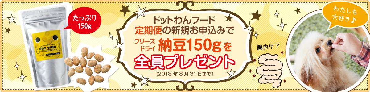 ドットわん定期納豆プレゼントキャンペーン