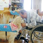 公益社団法人日本動物病院協会(JAHA)