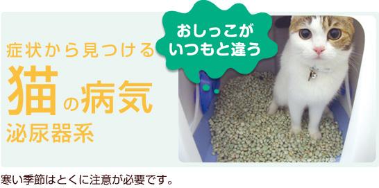 症状から見つける猫の病気 泌尿器系