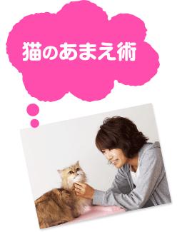 猫のあまえ術