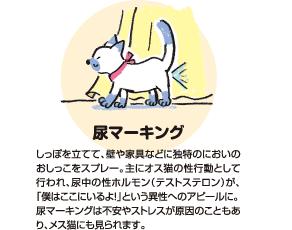 ほおずりマーキング|猫が柱や家具などにスリスリとほおずりするのも、マーキングの一種。主に猫の居住スペースである「コアエリア」で行われ、自分のにおいをつけることで、安心できるスペースにしています。