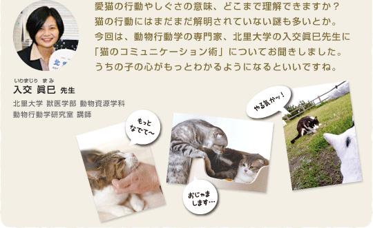 愛猫の行動やしぐさの意味、どこまで理解できますか?猫の行動にはまだまだ解明されていない謎も多いとか。今回は、動物行動学の専門家、北里大学の入交眞巳先生に「猫のコミュニケーション術」についてお聞きしました。うちの子の心がもっとわかるようになるといいですね。