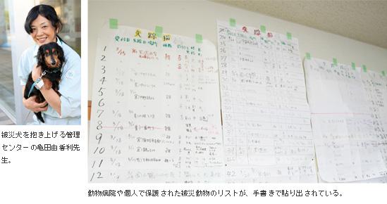 動物病院や個人で保護された被災動物のリストが、手書きで貼り出されている。
