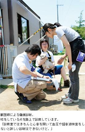 獣医師による健康診断。