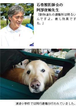 石巻獣医師会の阿部俊範先生