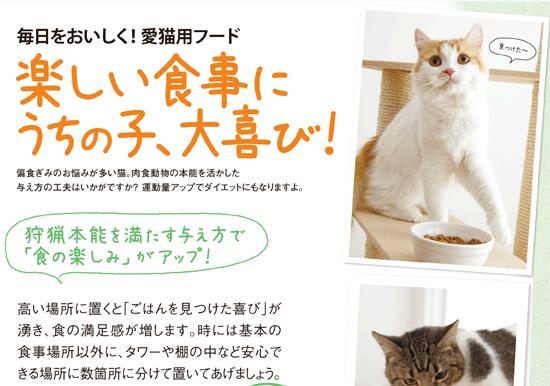 毎日をおいしく!愛猫用フード 楽しい食事にうちの子、大喜び!