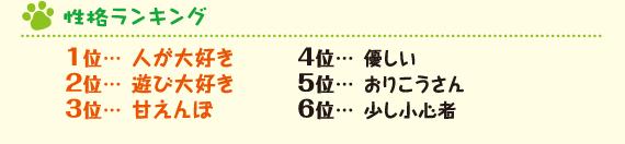 性格ランキング 1位人が大好き 2位遊び大好き 3位甘えんぼ 4位優しい 5位おりこうさん 6位少し小心者