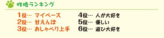 性格ランキング 1位マイペース 2位甘えんぼ 3位おしゃべり上手 4位人が大好き 5位優しい 6位遊び大好き