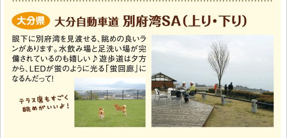 大分県 大分自動車道 別府湾SA(上り・下り)
