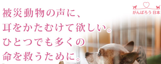 被災動物の声に、耳をかたむけて欲しい。ひとつでも多くの命を救うために。
