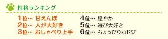 性格ランキング 1位・・・甘えんぼ2位・・・人が大好き3位・・・おしゃべり上手4位・・・穏やか5位・・・遊び大好き6位・・・ちょっぴりおドジ