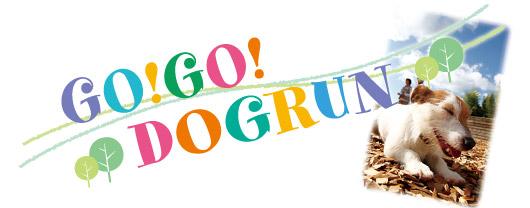 GO!GO!DOGRUN