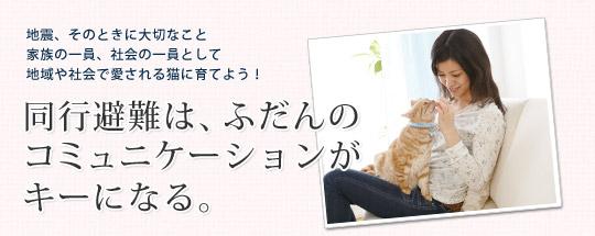 地震、そのときに大切なこと家族の一員、社会の一員として地域や社会で愛される猫に育てよう!同行避難は、ふだんのコミュニケーションがキーになる