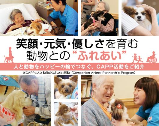 """笑顔・元気・優しさを育む動物との""""ふれあい""""人と動物をハッピーの輪でつなぐ、CAPP活動をご紹介 ※CAPP=人と動物のふれあい活動(Companion Animal Partnership Program)"""