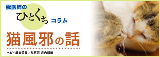 獣医師のひとくちコラム「猫風邪の話」ぺピイ編集委員会 吉内龍策