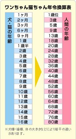 ワンちゃん猫ちゃん年令換算表