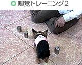 嗅覚トレーニング2