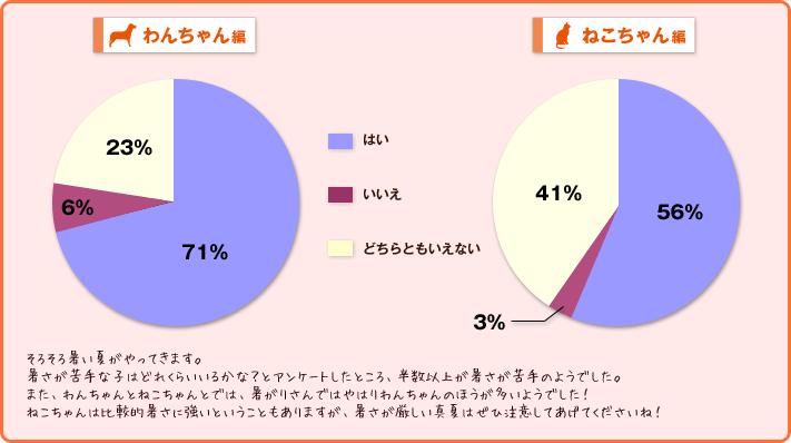 わんちゃん・ねこちゃん編