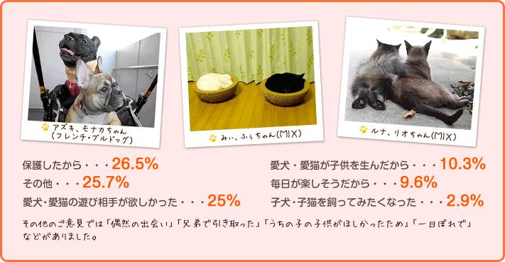 保護したから ・・・26.5% その他・・・25.7% 愛犬・愛猫の遊び相手が欲しかった・・・25% 愛犬・愛猫が子供を生んだから・・・10.3% 毎日が楽しそうだから・・・9.6% 毎日が楽しそうだから・・・9.6%